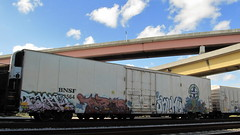 Tako Terms Skeme Jedi (Stalkin The Lines) Tags: graffiti ant jedi tako freights terms skeme