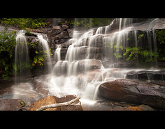Maddens Falls (AnthonyGinmanPhotography) Tags: waterfall 169 bushbash darkesforest maddensfalls dharawalnaturereserve