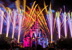 Magic Kingdom - Wishes!