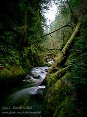 Goldstream Upper Rapids (Explored) (JRPhotographyBC) Tags: water river olympus rapids omd movingwater m43 em5 nd110 bwnd110 jrphotographyrogersblackberrynet microfourthirds 10stopneutraldensity johnjroberts olympusomdem5 omdem5 johnjroberts2013