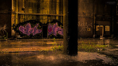 Let it Rain - Urbex DSC4120 A7II 4K Wallpaper (cleansurf2 Urbex) Tags: sony ilce ilce7m2 a7ii widescreen 16x9 wallpaper screensaver urbex urban decay mood rain graffiti colour color concrete building broken dark yellow green pink alone abandoned lost industrial worn old vivid rustic texture emount water shadow architecture age beauty