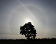 Sun Halo (sjb_astro) Tags: sun halo solar weather canon600d stokesley northyorkshire 1018mm handheld
