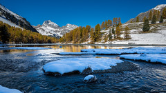 Lei da Palpuogna (epe3x) Tags: eis lrchen palpuognasee schnee schweiz see snow switzerland epe3x ice lake larches