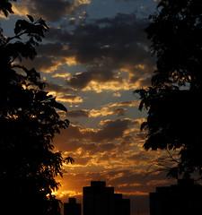 Golden Vibe (MARK2K16) Tags: golden sunset sun summer trees sky clouds cloud building orange yellow blue white black silhouette brazil indie vsco drama dramatic dark art tumblr instagram inspiration