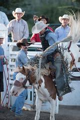 Tak_CPRA_2016-4841 (takahashi.blair) Tags: coachtak rodeo blairtakahashitakahashiblaircoachtakblairtakahashi pincher creek barrel racing bronc rope bareback steer bullriding