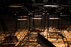 long shadows | golden hour (Nina ZM) Tags: ifttt wordpress