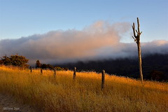 [Above the Hills] near Crystal Springs Golf Course, San Mateo, CA (miltonsun) Tags: lowfog freewayi280 bayarea california westcoast landscape mountains clouds sky