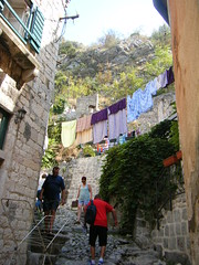 Kotor, Montenegro - washing at the start of the city wall climb (rossendale2016) Tags: trousers blouse shirts pair curtains flowers posts plant wrought railings metal airing iron mademe clothes wooden frames window shitters louvred green houses secure strong lasted labour manual ago years hundreds built protecting protection centuries walking feet constant worm steps stone approach multicoloured windows hanging drying wind blowing high laundry rope colourful clean thought hard dangerous slippery slippy steep washing line kotor montenegro start city wall walls climb