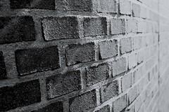 Amsterdam (Michael Degenhart) Tags: amsterdam september blackandwhite monochrome summer light shadow wal brick black white