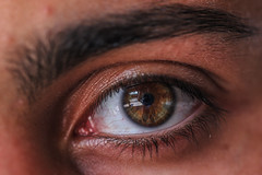 IMG_4446 (tamara_porcu) Tags: occhio eye brown riflessi macro canon