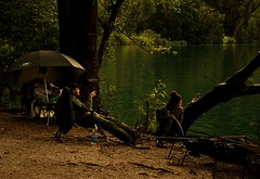 Skitt fiske (audun.bie) Tags: lake fishing bled slovenia equipment nature outdoors green waiting