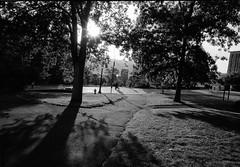 Sun and Shade (solarnu) Tags: dile doublex 68f9mins leicam6ttl iso200 r164 hc110 ithaca ny usa cornell cornelluniversity sunset shadows walking