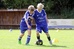 Feriencamp Pln 30.08.16 - b (51) (HSV-Fuballschule) Tags: hsv fussballschule feriencamp pln vom 2908 bis 02092016