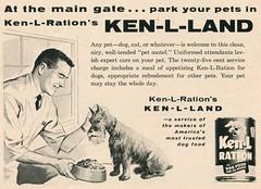 At the main gate... park your pets in Ken-L-Ration's Ken-L-Land, 1960 ad (Tom Simpson) Tags: vacationland vintage 1960 1960s disney vintagedisney disneyland ad ads advertising vintagead vintageads kenlland dogfood