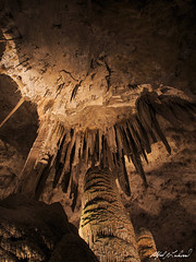 Look Out Below (Alfred J. Lockwood Photography) Tags: alfredjlockwood nature cave cavern carlsbadcavernsnationalpark nationalpark newmexico stalactite stalagmite limestone hallofgiants bigroom