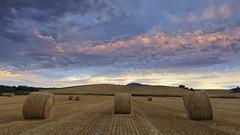 Noughts and crosses (explore) (Rafael Dez) Tags: espaa larioja santurdejo atardecer sunset nubes filtro fardos rafaeldez paisaje