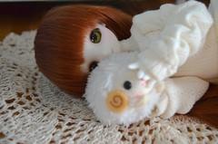 Paprika is here! (geishacookie) Tags: sio2 ragdoll bjd tiny 16 yosd cute kawaii cat