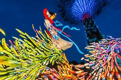 Mid-Autumn Festival (BP Chua) Tags: midautumn festival lantern display deco decoration exhibition colours colourful supertrees woman bluehour singapore nikon wideangle