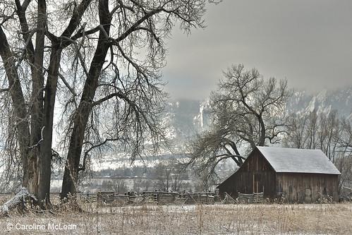 Photo - Old Doran Barn