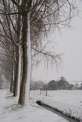 Snowwhite (j.elemans) Tags: winter snow building tree nature dutch soft farm sony boom tones beuningen gelderland photomix a300 mygearandme mygearandmepremium mygearandmebronze mygearandmesilver blinkagain rememberthatmomentlevel4 rememberthatmomentlevel1 rememberthatmomentlevel2 rememberthatmomentlevel3