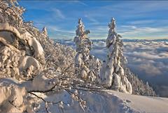 Les Rochers de Tablettes and the Alpes, Canton of Neuchtel. in 12 12 12 . No. 1592. (Izakigur) Tags: winter mountains alps liberty schweiz switzerland nc nikon europa europe flickr suisse suiza swiss feel ne jura helvetia nikkor svizzera neuchatel neuchtel lepetitprince ch berna dieschweiz musictomyeyes  sussa suizo romandie suisseromande  myswitzerland lasuisse  1000faves  cantondeneuchtel d700  nikond700 nikkor2470f28 nikkor2470 izakigur nikon2470f28 nikon2470mmf28g cantonofneuchatel  suisia laventuresuisse bestcapturesaoi izakigurneuchatel mygearandme izakigurneuchtel  izakigur2012 izakigurd700