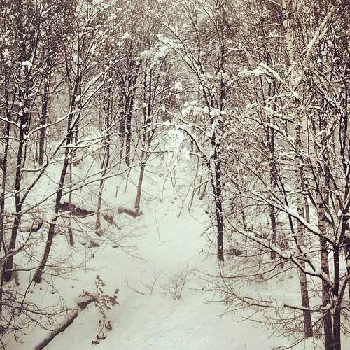 #belarus #winter #december  #home #window #view #mozyr