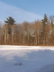 Snow Covered Field (andyarthur) Tags: snow field covered delmar andyarthur