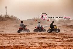 الغضا (5) - HDR (Ebtehal Ibrahim) Tags: كانون عنيزة الغضا