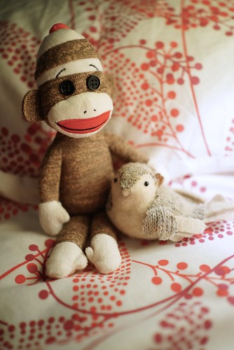 The Baby Sock Monkey Finds a Friend