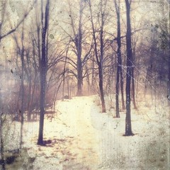 Aisle (phoenix_x_) Tags: trees winter snow texture fog forest dc path foggy scratches dirty creepy dirt trail scratched afterglow loftus iphone myhappyplace iphone4 iphoneography hipstamatic scratchcam uploaded:by=flickrmobile flickriosapp:filter=nofilter