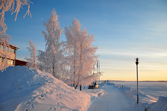 Sunny - frosty - cold (totheforest) Tags: city winter snow cold kyla frozen vinter frost sweden sunny frosty sn lule norrbotten soligt southharbour nikond90 lulelven sdrahamn luleriver nikkorafsdx18105mmf3556gedvr lulelv luleriver