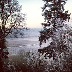 """Frosty. • <a style=""""font-size:0.8em;"""" href=""""https://www.flickr.com/photos/61640076@N04/8402924678/"""" target=""""_blank"""">View on Flickr</a>"""
