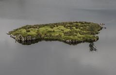 patterdale-shap (ginger_scallywag) Tags: blackandwhite panorama reflection photoshop canon john walking dale hills cecily gateway tarn lonetree cs5 eos40d tamron17270mm patterdaletoshap