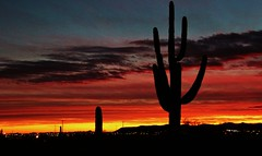 Phoenix Sunset2 01-29-2013 (Photography Peter101) Tags: sunset arizona nature canon