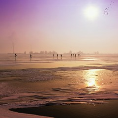 Scattered silhouettes on ice and sky (B℮n) Tags: winter sunset people sun sunlight snow cold holland ice netherlands dutch sunshine freedom frozen flying geese topf50 glow iceskating skating thenetherlands silhouettes ganzen line skater nes feeling wintertime topf100 infinite marken speedskaters waterland pret ijs vast monnickendam frozensea liberate markermeer historicalmoment naturalice 100faves 50faves coldwave natuurijs gouwzee seaofice schaatsfeest schaatstocht ijszeilen dutchskaters ijstocht gouwsea iceskatingtomarken historischeijstocht 12cmdik groteijsoppervlakte schaatsweekend skateoutdoors dutchskatejourney iceinthenetherlands hollandlovesice dichtbevroren 12cmdikijs infiniteseaofice 12cmthickice