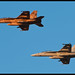 F/A-18F Super Hornets - 101 and 110 - VFA-122 - US Navy