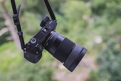 IMG_7936 (adaml5) Tags: sony a6000 sigma 30mm 14 canon 6d 35 camera product bokeh