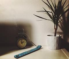 Time has passed (pablokhlebnikov1) Tags: inspiration shadows mobileshot mobilephoto iphone vscocam vsco night smog flower watch stilllife