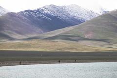 IMG_1108 (chungkwan) Tags: namco tibet religion buddha travel nature world life canon sigma