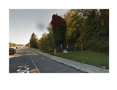 Charlie's Tree (SqueakyMarmot) Tags: vancouver suburb surrey highway1 transcanadahighway douglasfir fallen memorial worldwar1 charliestree screenshot googlestreetview