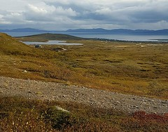 A view from Torsvarden (GeirB,) Tags: varanger vads vadso vadsoe sykkeltur training arctic 70north bike landscape nordnorge norway finnmark northernnorway august sykkel trip friluft friskifinnmark liveterbestute outdoor