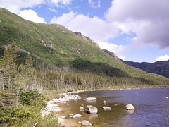 014 - Parc national de la Gaspsie : Lac aux Amricains (Arfphandal Forfal Forphan) Tags: trip qubec gaspsie forest tree arbre fort nature water eau park landscape