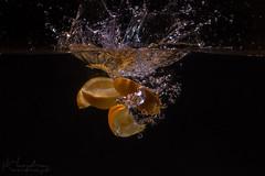 Orange Splash (Hundra Kontrast) Tags: orange water vatten apelsin splash bubbles black highspeed high speed fruit frukt stnk