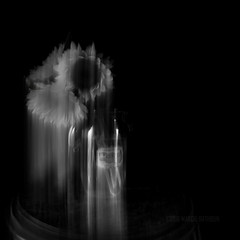 Weeping Sunflowers (MacroMarcie) Tags: stilllife motion square monochrome lightpainting flowers canningjar dark topaz x20 fuji slidersunday hss photoshop postprocessing triomphe blur blackandwhite blackwhite black white grey shadesofgrey