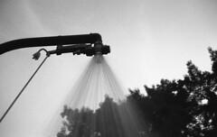 Shower (Nils Kristofer Gustafsson) Tags: blackandwhite bnw ishootfilm retro rollei 400s lomo lomography sweden rebro keepfilmalive filmisnotdead filmphotography film rodina adonal yashica electro cc
