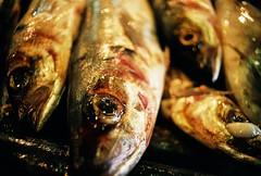 Fish (m.sukhanenko) Tags: olympusom2sp zuiko50mm fujifilmsuperia iso200 fish eye blood detail bokeh film analogue shiny