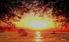 SEPTEMBER's ROMANTIC SUNSET SCENERY  (*Saariy*) Tags: saariysqualitypictures coth coth5