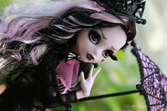 IMG_9865 (Cleo6666) Tags: draculaura collector draculaurasweet1600collectordoll monster high monsterhigh mattel deluxe deluxeedition