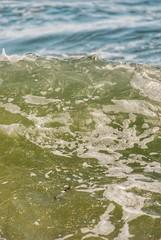 Hurricane Season (sarahk5446) Tags: water wanderlust pensacola ocean color coast colorful city crafty clouds white wildlife nautical nature nikon nikonphotography photography park paradise perdidokeyflorida florida alabama waves outside orangebeach gulfofmexico gulfcoast green summer sea spring swim sun surf sand sky south art adventure vacation vintage outdoors beach blue dive surfing mexico marine light landscape love tamron shore seashore salt life