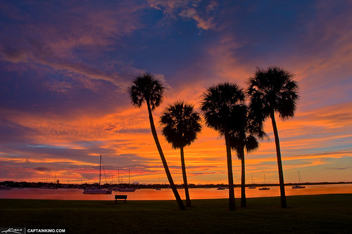 Sunrise on The Beach With Palm Trees Sunrise Over Palm Trees at